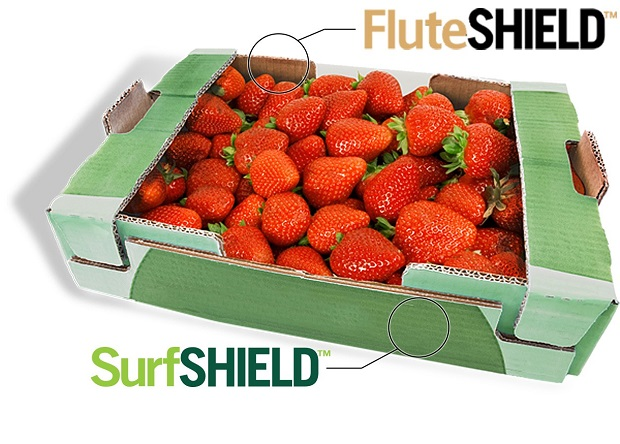 FluteSHIELD corrugated medium is a perfect water resistant coating for produce packaging.